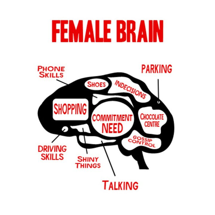 Deconstructing the male vs. female brain in a relationship